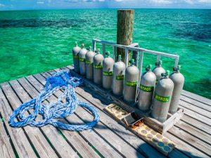 What Are The Benefits of Diving on Nitrox?