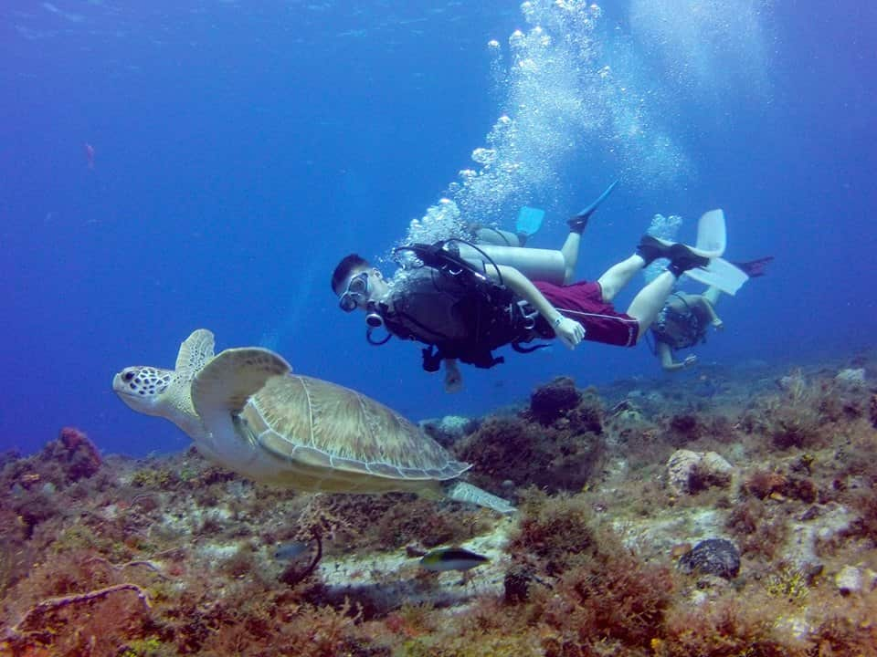 In The Drift | Drift Diving Cozumel