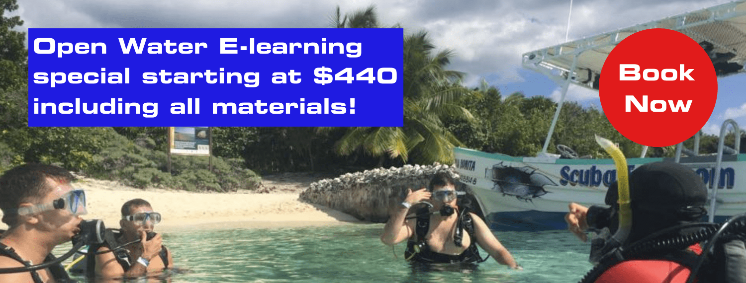 open water e-learning special starting at $440 including all materials
