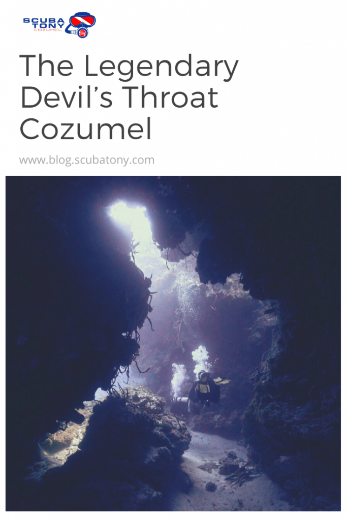 The Legendary Devil's Throat Cozumel