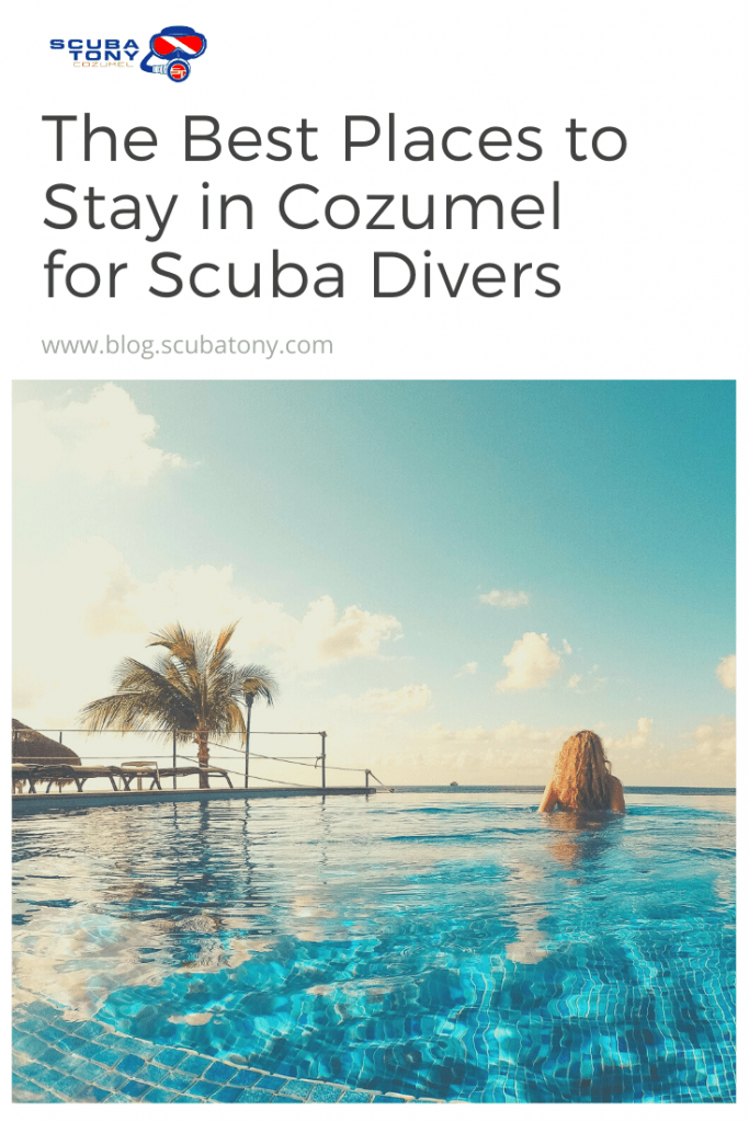 The Best Places to Stay in Cozumel for Scuba Divers